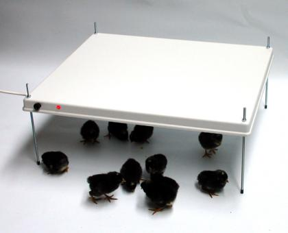 HEKA warm plate for 30-35 chicken, 31cm x 41cm